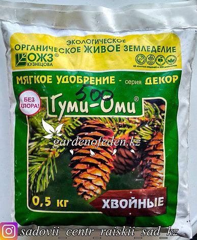 Удобрение Гуми-Оми для хвойных 0,5 кг, фото 2