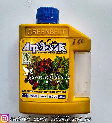 Удобрение Агрикола для декоративных растений флакон 250 мл., фото 2