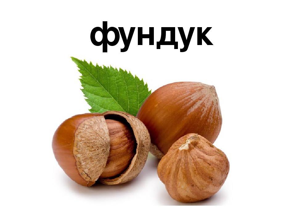 Фундук Ломбардский орех сорт  Рояль
