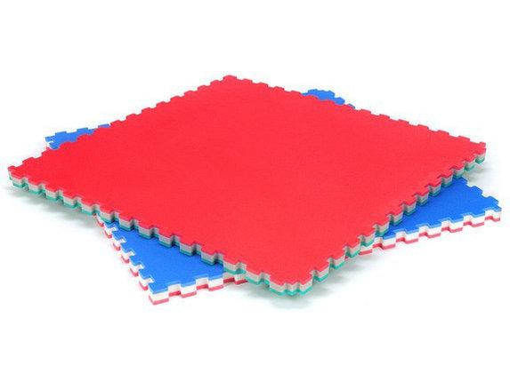 Татами (даянг)  100см х 100см. х 4 см, фото 2