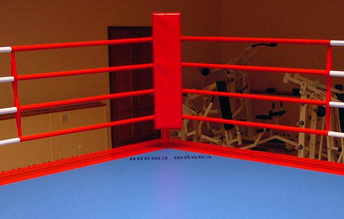Подушка для ринга, фото 2