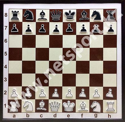 Демонстрационные шахматные доска, фото 2