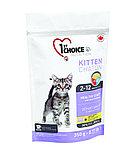 1st Choice «Здоровый старт» для котят от 2 до 12 месяцев, на основе курицы  350 гр.