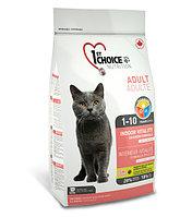 1st Choice VITALITY indoor «Виталити» на основе курицы - для взрослых домашних кошек от года до 10 лет 2.72кг.