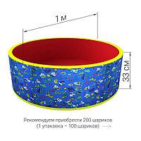 Сухой бассейн с шариками Романа Веселая поляна (синий)