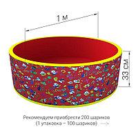 Сухой бассейн с шариками Романа Веселая поляна (красный), фото 1
