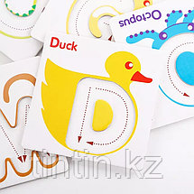 Карточки-вкладыши с буквами английского алфавита, фото 3