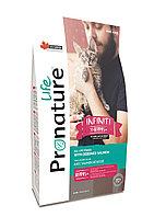 Pronature Life Infiniti  (Пронатюр Лайф Инфинити) для котят и кошек с лососем 2,27 кг, фото 1