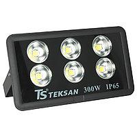 Прожектор LED TS008 300W 6000K (TS)1шт