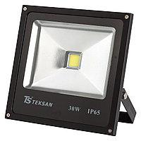 Прожектор LED TS030 30W 6000K BLACK (TS)15шт
