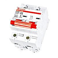 BA47-100H  Автомат  2P 100A     (60шт)   (TEKSAN)