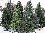 Ели искусственные искусственная ель, елки искусственные, елки из пвх 4 м (диаметр 1,7 м), фото 4