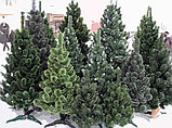 Ели искусственные искусственная ель, елки искусственные, елки из пвх 11 м (диаметр 4,8 м), фото 4