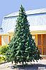 Искусственная каркасная елка Астана, хвоя-пленка 15 м (диаметр 6,6 м), фото 6