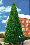 Искусственная каркасная елка Астана, хвоя-пленка 17 м (диаметр 7,5 м), фото 3