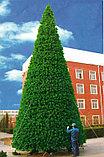 Искусственная каркасная елка Астана, хвоя-пленка 22 м (диаметр 9,7 м), фото 3