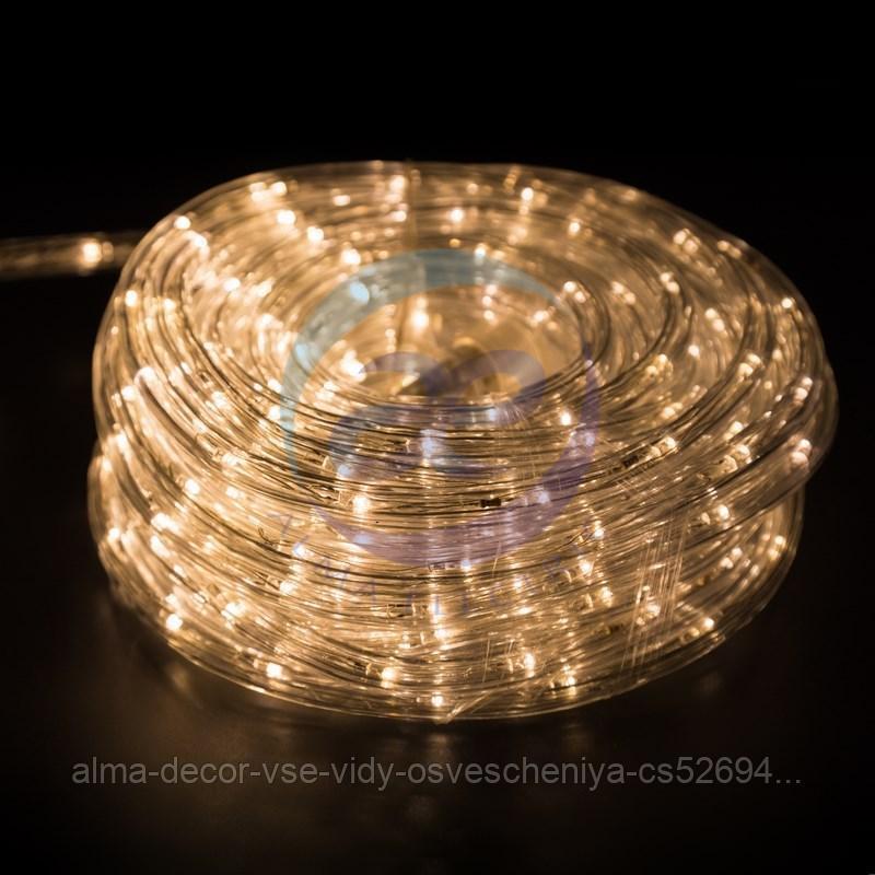 Дюралайт LED, свечение с динамикой (3W), 24 LED/м, ТЕПЛЫЙ БЕЛЫЙ, 14м