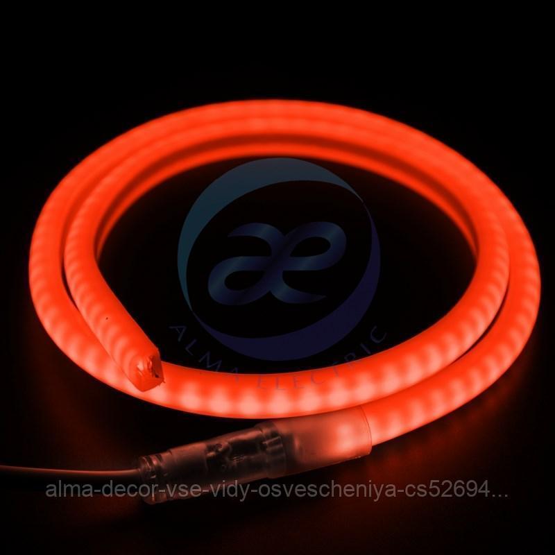 Гибкий Неон LED SMD, форма - D, красный, 120 LED/м, бухта 100м