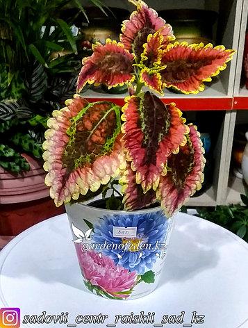 """Пластиковый горшок орхидей """"Соломон"""". Цвет: Белый. Объем: 0.8л, фото 2"""