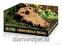 Декор-убежище череп крокодила для террариума Hagen арт.PT2856