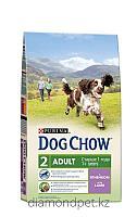 Dog chow Для взрослых собак с ягненком 14кг Purina арт.12260323