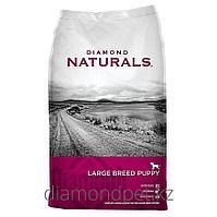 Сухой корм для щенков крупных пород Ягненок с рисом 18.14кг Diamond Naturals Large Breed Puppy арт.DN01