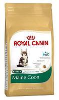 Royal Canin MaineCoon Kitten Корм для котят Мэйн-Кун до 15мес 2кг арт.Y00876