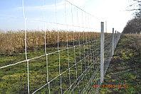 Сетка шарнирная - Чабанка - Фермерская - высота 1,4 х 50 м