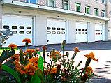Промышленные ворота TL-FV – панорамные, фото 7