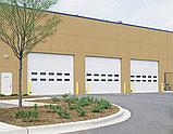 Промышленные ворота TL-FV – панорамные, фото 9