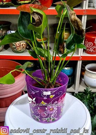 """Пластиковый горшок для орхидей """"Камилла"""". Цвет: Фиолетовый. Объем: 1.8л, фото 2"""