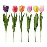Искусственные тюльпаны, фото 2