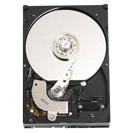 """Жесткий диск Dell 1000 ГБ 7200 RPM 3.5"""", фото 2"""