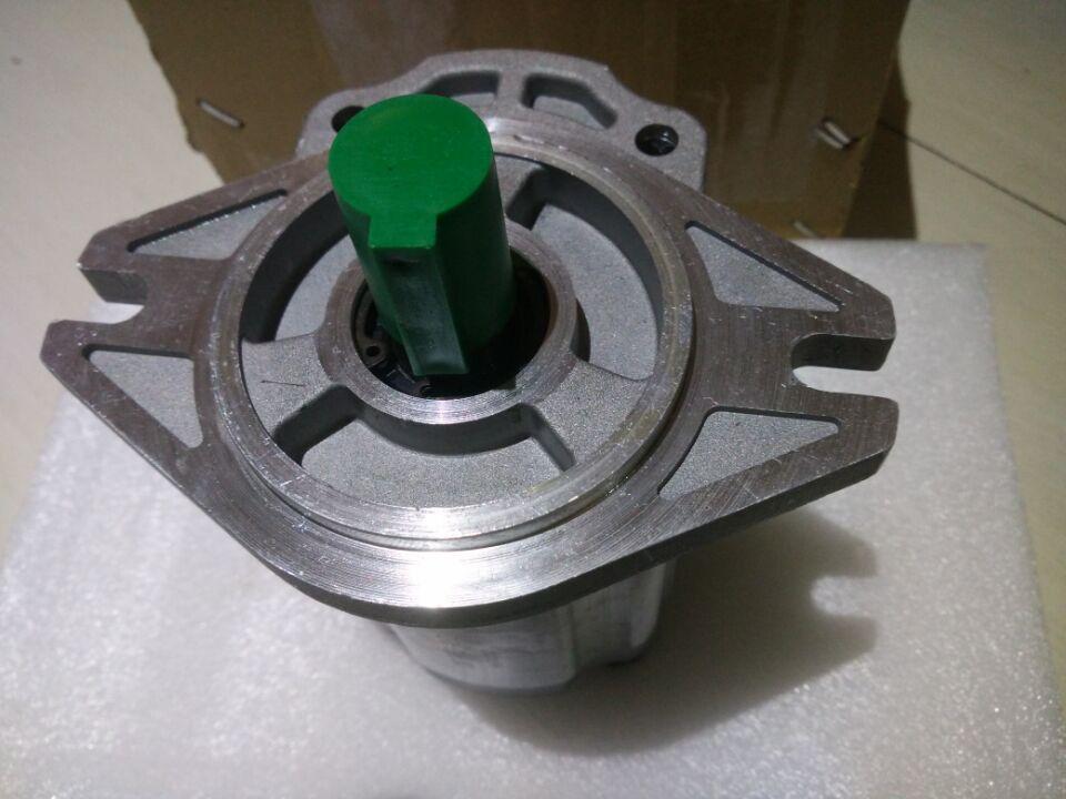 Насос гидравлический (CBF-F432-ALPL) XCMG WZ30-25