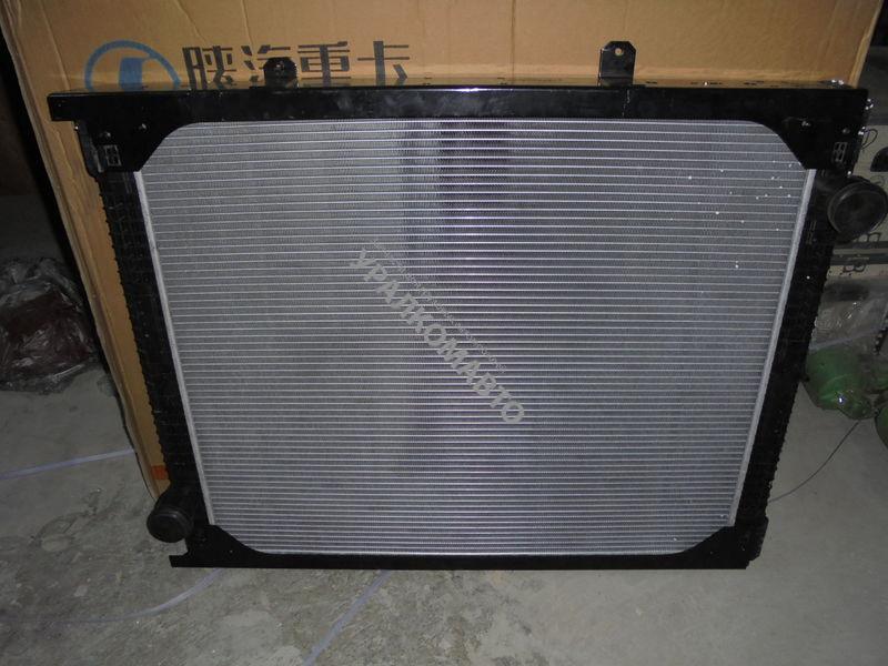 Радиатор системы охлаждения (алюминий) DZ95259532213 F3000