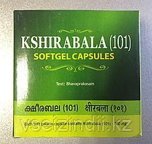 Кширабала 101/Kshirabala 101