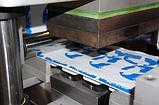 Термо-формовочная линия, для дозирования и упаковки творога, плавленных сыров, джемов, сливочного масла TFM, фото 7