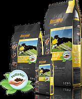 Belcando adult Aktiv сухой корм для активных собак всех пород