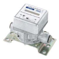 Автономный расходомер топлива DFM 100B
