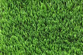 Искусственные тафтинговые покрытия (трава) (CCG)