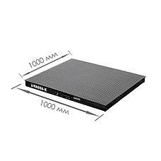Весы платформенные с печатью этикеток 4D-PM-1_RP, фото 3