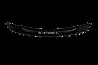 Мухобойка (Дефлектор капота) Subaru Legacy 2015+