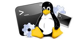 Установка ОС и администрирование Linux