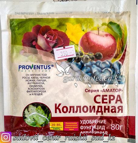 "Сера коллоидная ""Провентус"" 80 г, фото 2"
