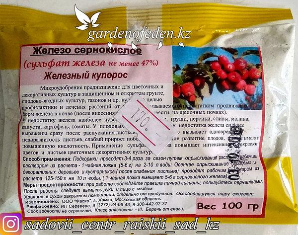 Антисептик Железный Купорос пакет 100г., фото 2