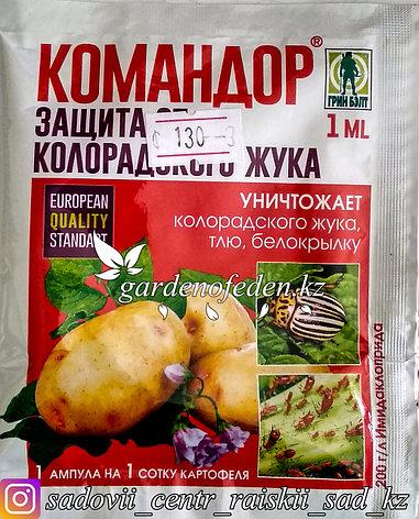 Средство Командор от насекомых-вредителей ампула 1 мл., фото 2