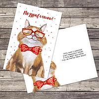 Открытка «Поздравляю», добрый кот, 12 × 18 см