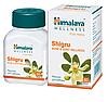 Shigru\Moringa (Моринга) Himalaya- здоровье суставов, при артрите, ревматизме, истощении, 60 таблеток