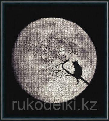 """Набор для вышивания крестом """"Лунная соната. Силуэты"""""""