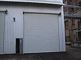 Рулонные ворота, фото 10